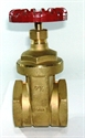 "Picture of 2 1/2"" D151A Gate Valve"
