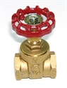 "Picture of 3/4"" D151A Gate Valve"