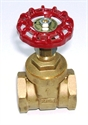 "Picture of 1"" D151A Gate Valve"