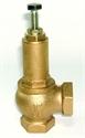 "Picture of 1"" Pressure relief valve"