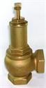 "Picture of 2"" Pressure relief valve"